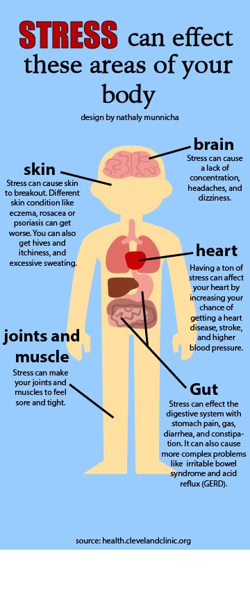 stress what can it do to your body