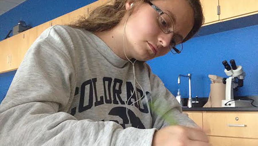 Now+Watch+Me+Study
